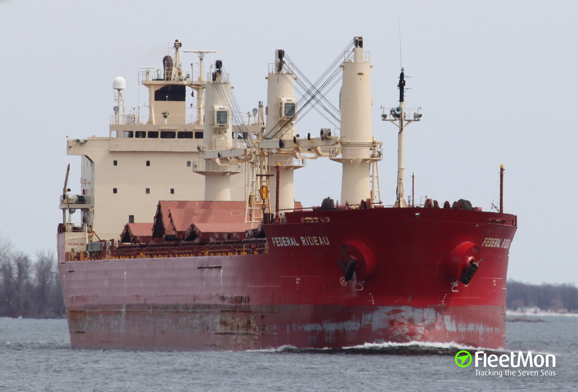Bulk carrier Federal Rideau aground off Detroit