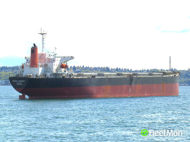 CO2 leak killed 10, injured 19 on board of Panamax bulk carrier, China