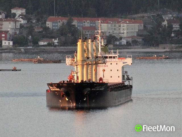 Thai bulk carrier troubled in Ukrainian waters, had to sail astern