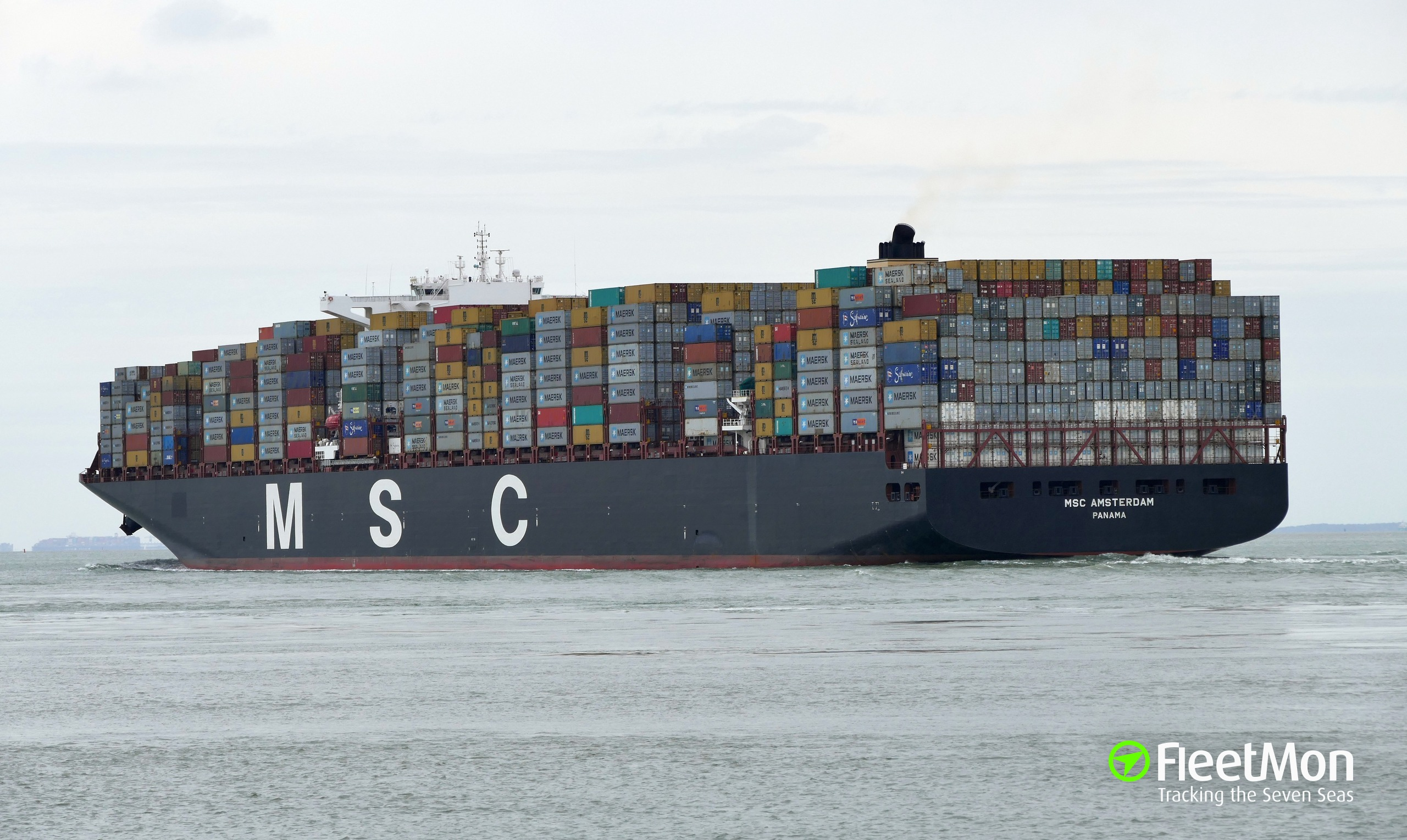 photo of msc amsterdam imo 9606338 mmsi 373598000 callsign 3euj taken by chowchow. Black Bedroom Furniture Sets. Home Design Ideas