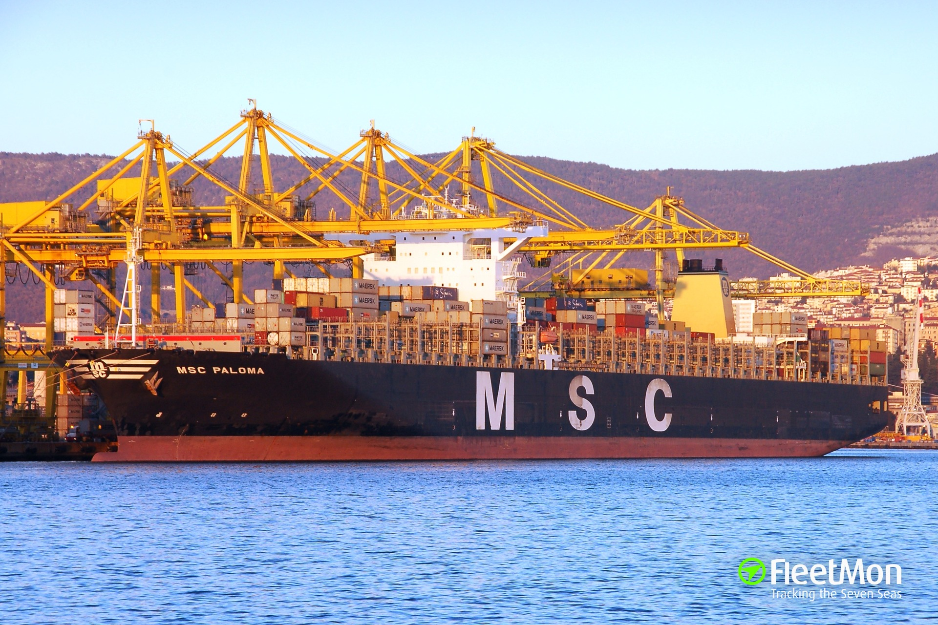 MSC PALOMA in Trieste