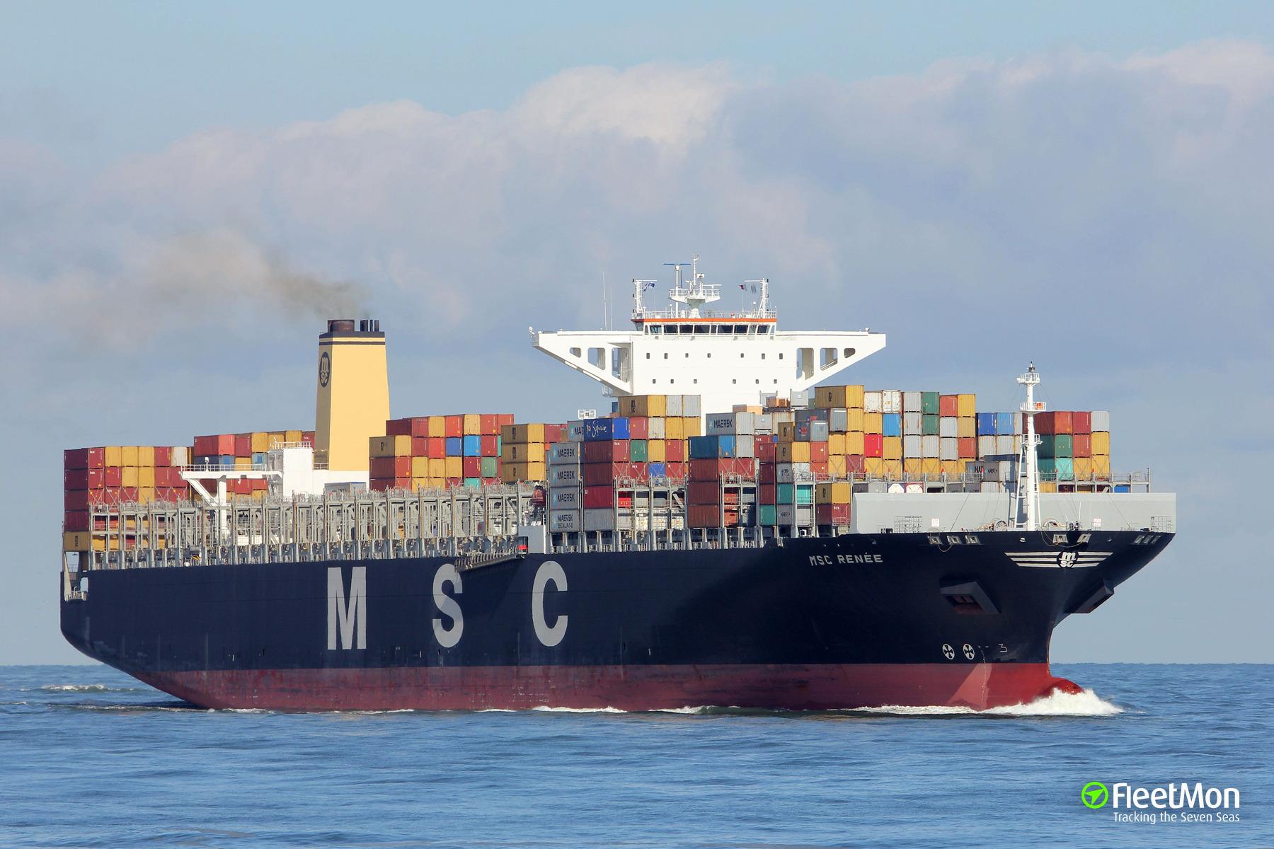 Mega-boxship MSC Renee breached 10-15 meters after allision in Antwerp