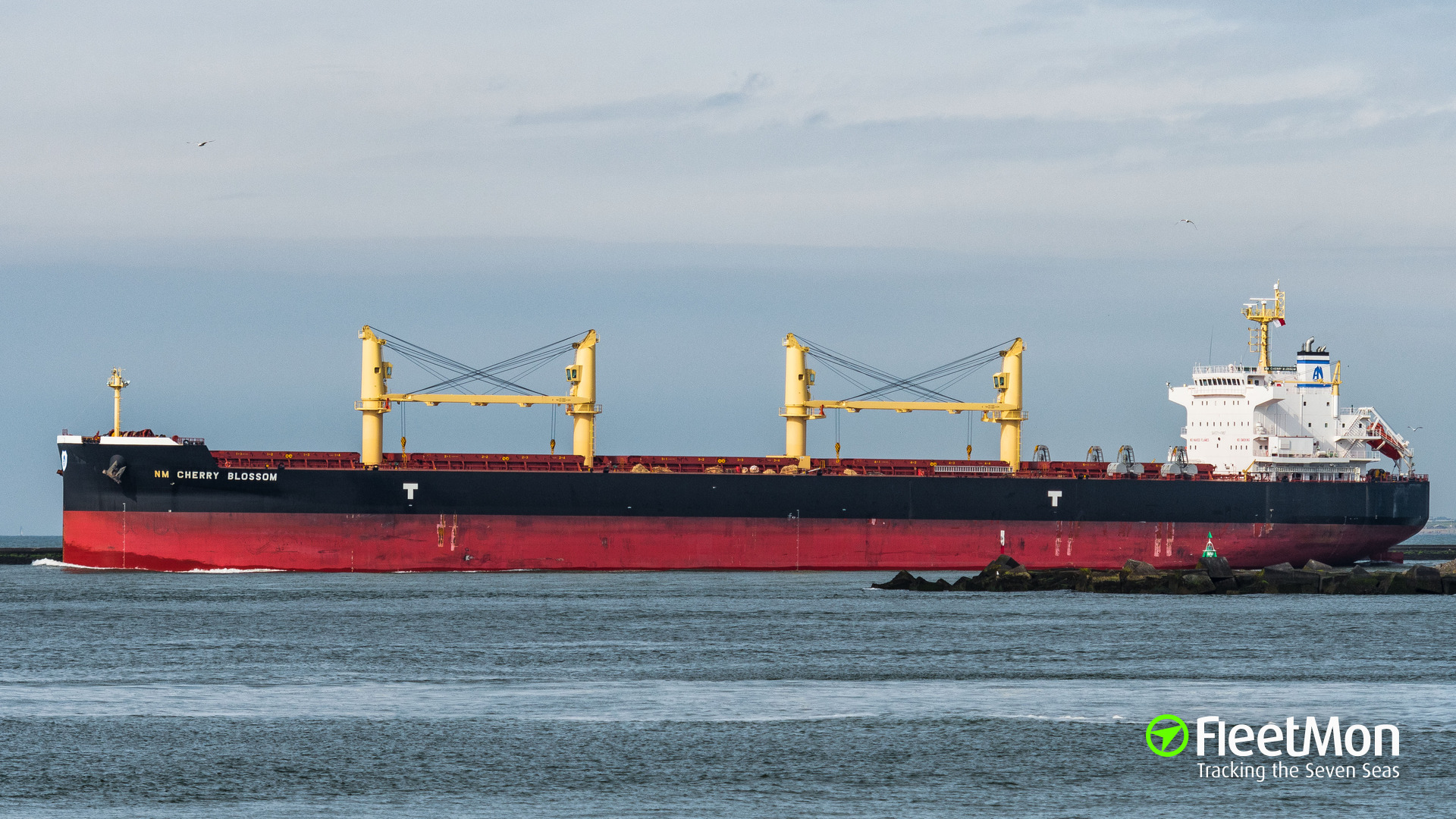 Bulk carrier detained in South Africa after Polisario request
