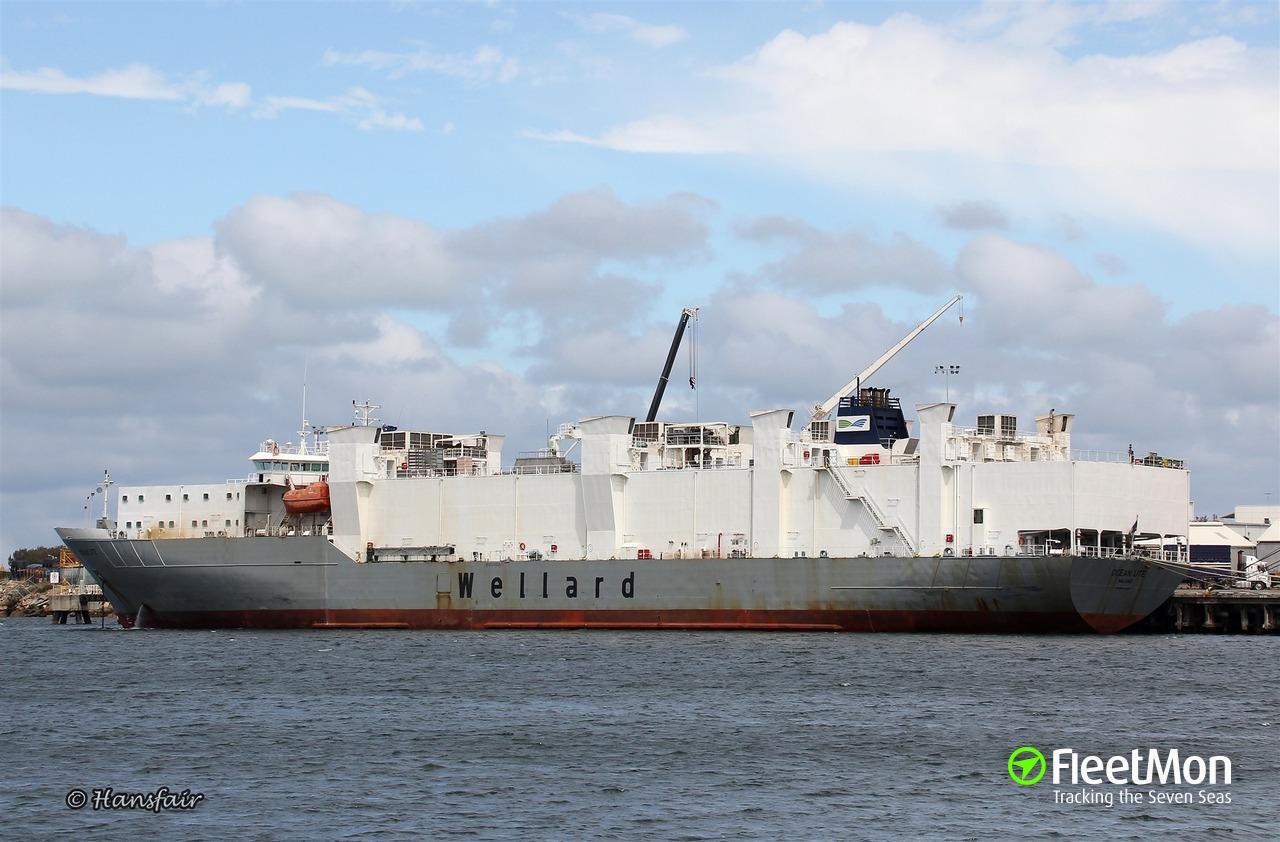 OCEAN UTE Cargo ship IMO 9074925