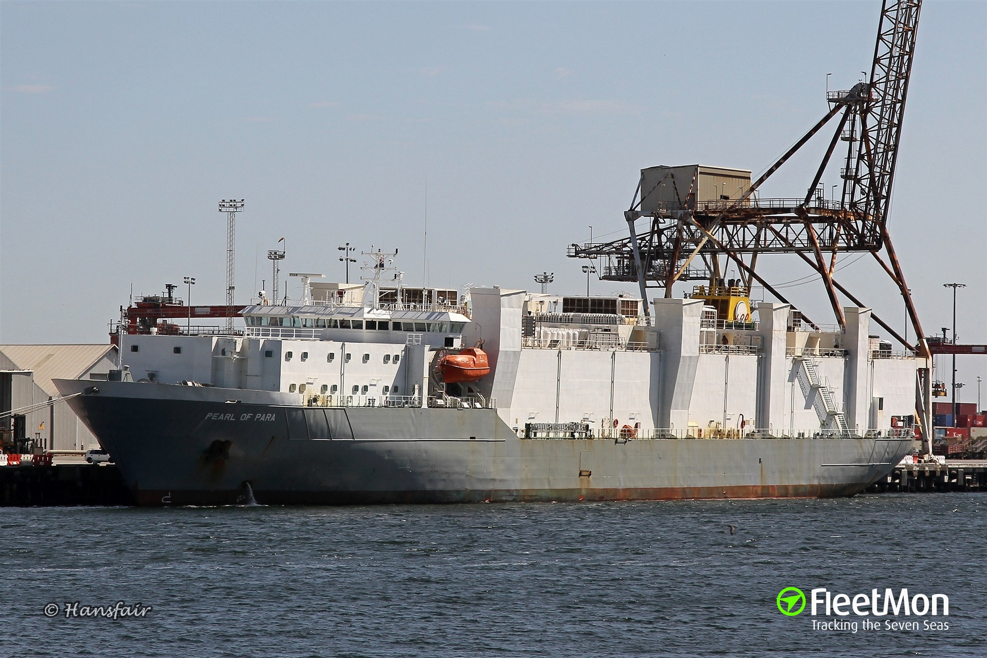 Livestock carrier Pearl of Para returned to Fremantle with cattle on board for repairs