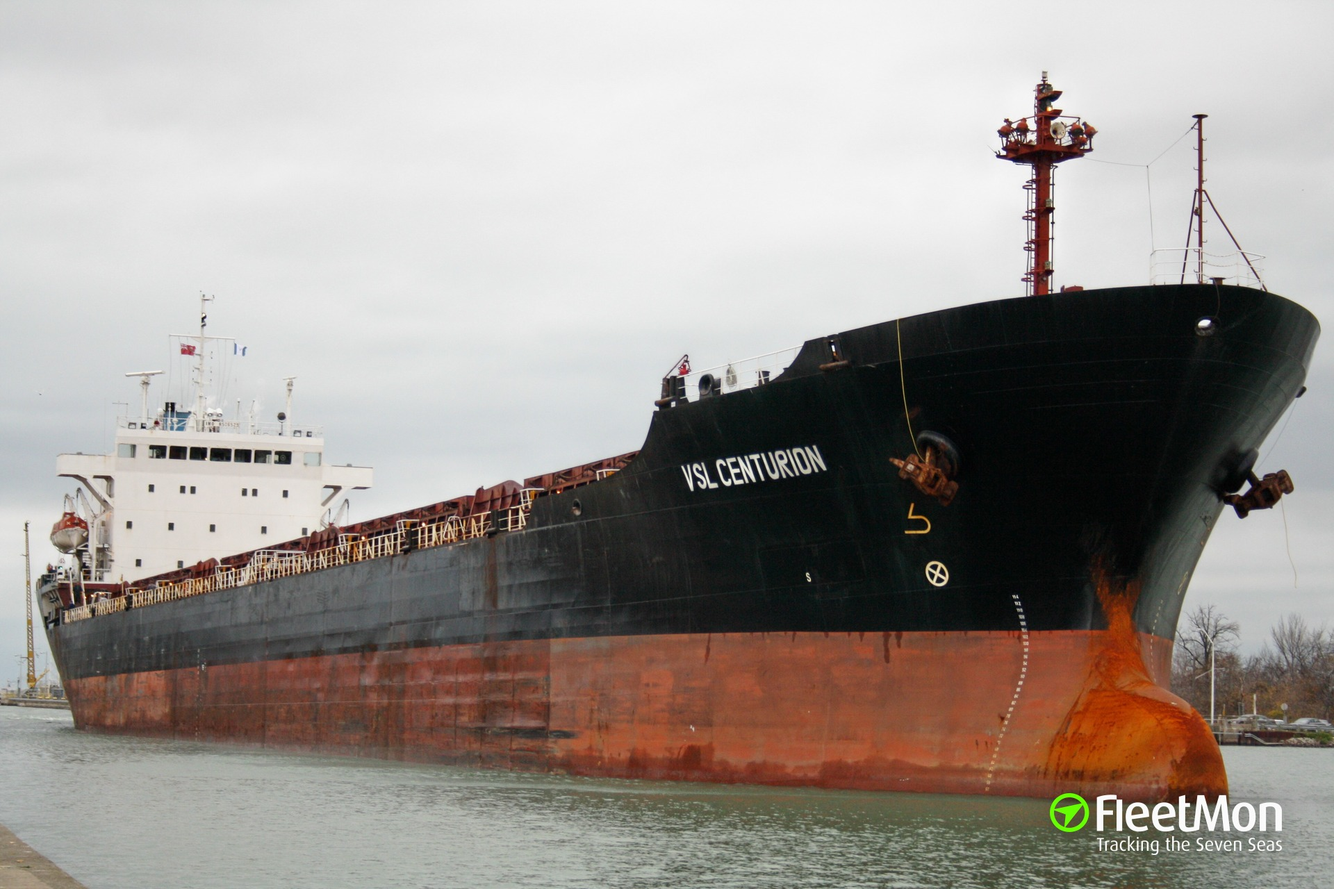 Bulk carrier Phoenix Sun manager replies to allegations, Canada