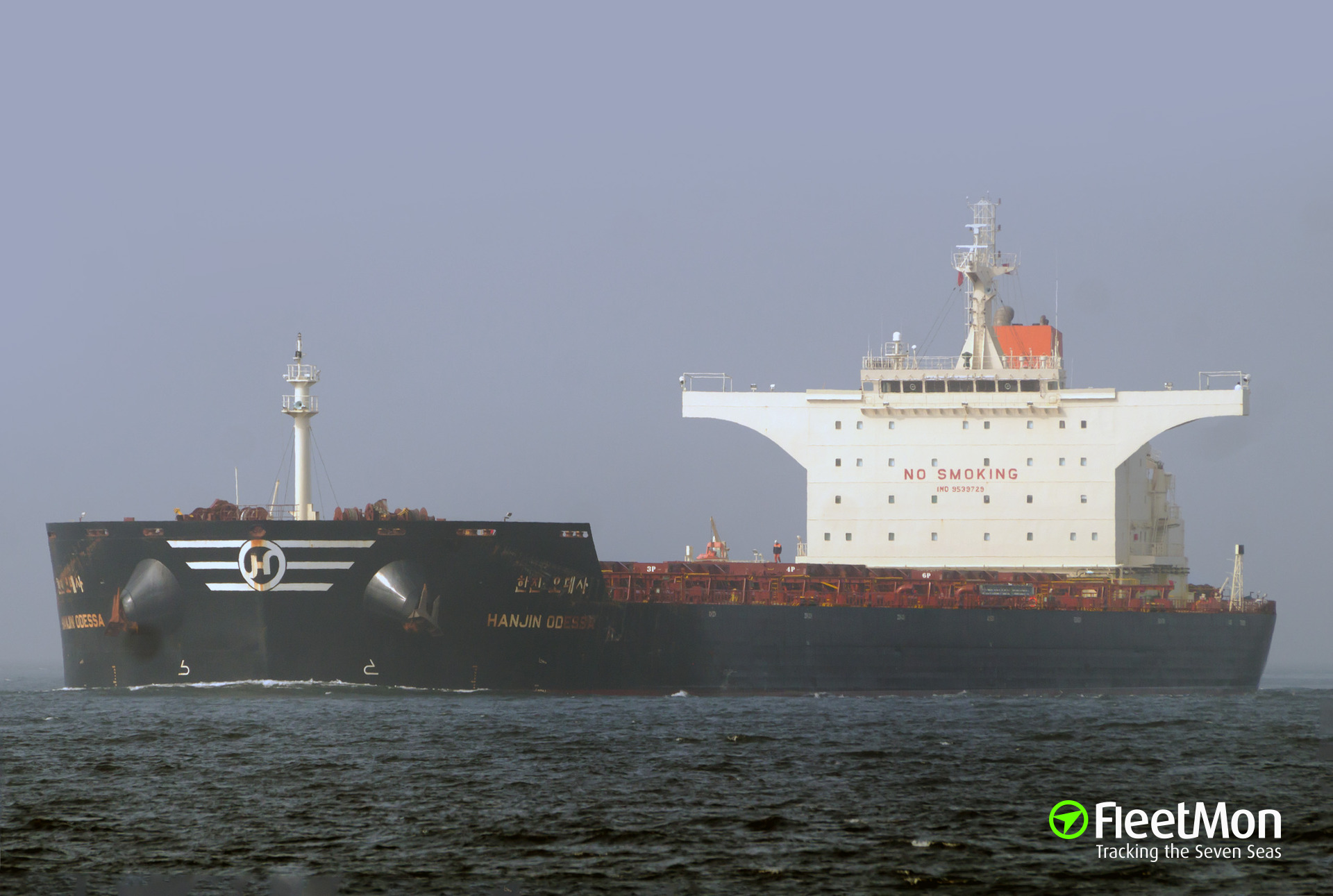 Bulk carrier Norsul Camocim allided with bulk carrier Hanjin Odessa, Santos