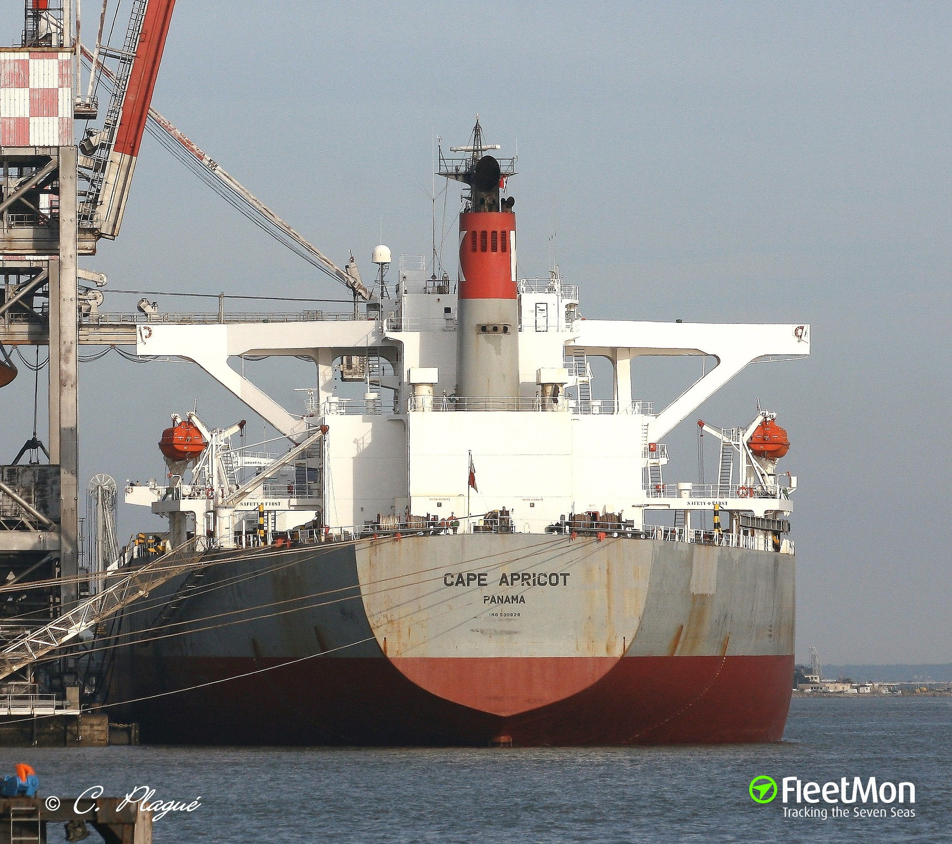 Japanese capesize Cape Apricot knocked largest coal exporting berth in North America
