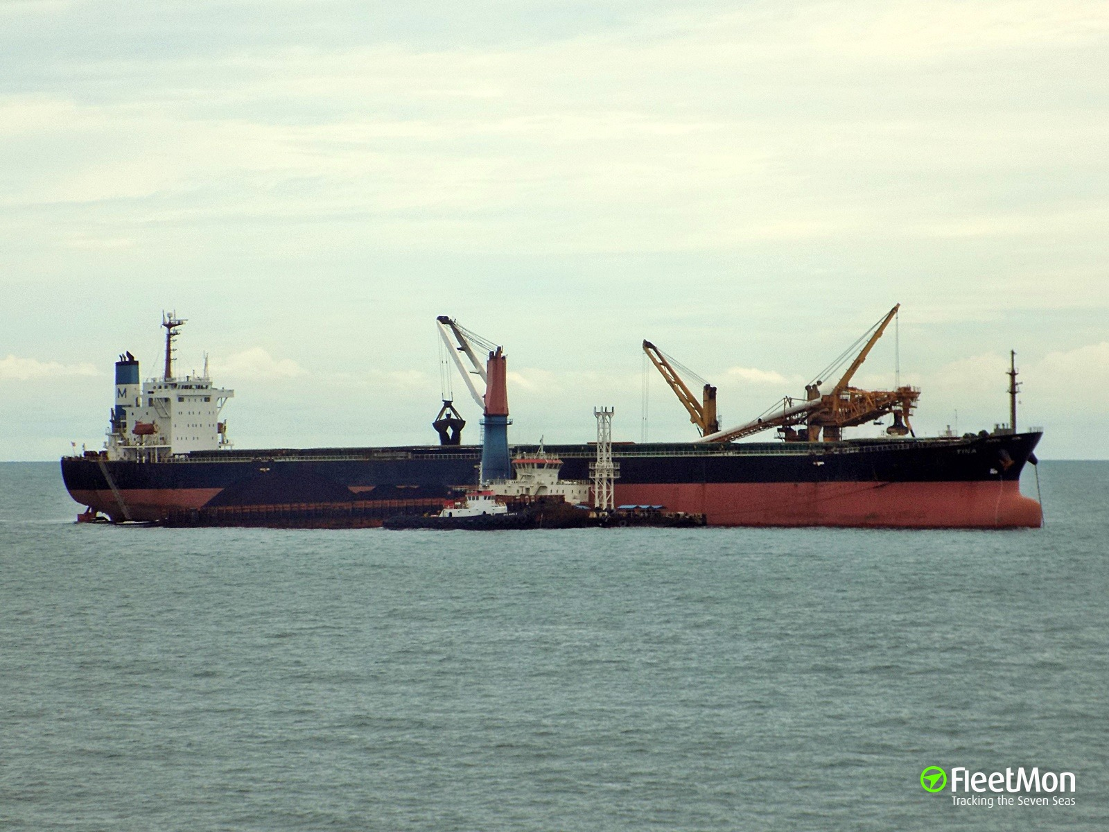 Bulk carrier TINA arrested in Ennore, India
