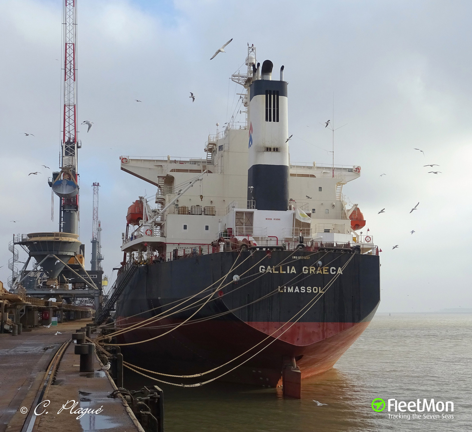 Bulk carrier GALLIA GRAECA towed to Victoria